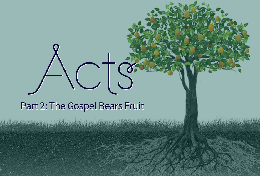 Acts Part 2: The Gospel Bears Fruit